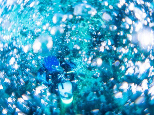 マイクロ魚眼レンズの世界